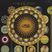 Click here for more info about '311 - Hey You'