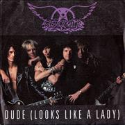 "Aerosmith Dude [Looks Like A Lady] Germany 7"" vinyl"