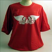 Click here for more info about 'Aerosmith - Logo T-Shirt - XL'