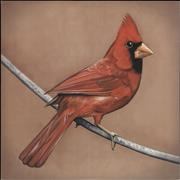 Click here for more info about 'Old Crows/Young Cardinals - Grey and Red Vinyl'