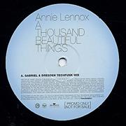Click here for more info about 'Annie Lennox - A Thousand Beautiful Things'