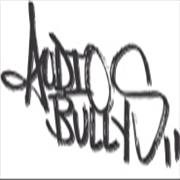 Click here for more info about 'Audio Bullys - Back To Mine'