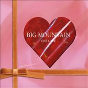 Click here for more info about 'Big Mountain - One Love'