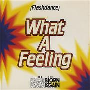 Click here for more info about 'Bjorn Again - Flashdance What A Feeling'