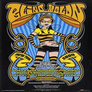 Click here for more info about 'Blind Melon - Japan Tour 2009'