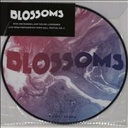 Click here for more info about 'Blossoms - Live From Portmeirion Town Hall, Festival No. 6 - RSD17 - Sealed'