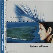 Click here for more info about 'Brian Wilson - Your Imagination'