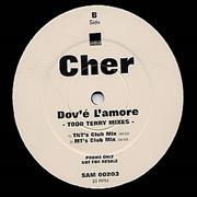 Click here for more info about 'Cher - Dov'e L'amore - Tony Moran/Todd Terry Mixes'