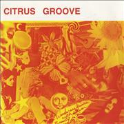 Click here for more info about 'Citrus Groove - Mesmerized'