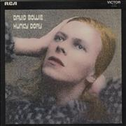 Click here for more info about 'Hunky Dory - Dynaflex'