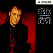 Click here for more info about 'David Essex - Everlasting Love'