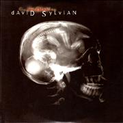 Click here for more info about 'David Sylvian - Godman'