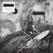 Click here for more info about 'David Sylvian - Secrets Of The Beehive - 180gram Vinyl - Sealed'
