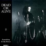 "Dead Or Alive Something In My House UK 7"" vinyl"