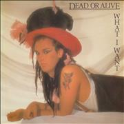 """Dead Or Alive What I Want - Withdrawn Floppy Hat Sleeve UK 7"""" vinyl"""