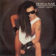 "Dead Or Alive What I Want UK 7"" vinyl Promo"