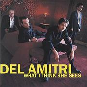 Del Amitri What I Think She Sees USA CD single Promo