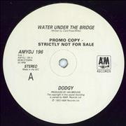 Click here for more info about 'Dodgy - Water Under The Bridge'