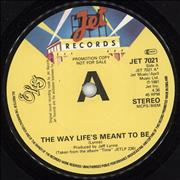 Click here for more info about 'Electric Light Orchestra - The Way Life's Meant To Be'