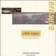 Click here for more info about 'Erasure - A Little Respect - Remix'