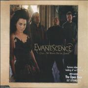 Click here for more info about 'Evanescence - Call Me When You're Sober'