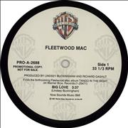 Click here for more info about 'Fleetwood Mac - Big Love'