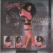 Click here for more info about 'Haywoode - I Can't Let You Go'