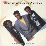 Click here for more info about 'Imagination - I Know What Love Is'