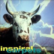 Click here for more info about 'Inspiral Carpets - Commercial Rain'