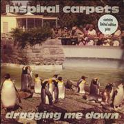 Click here for more info about 'Inspiral Carpets - Dragging Me Down + print'