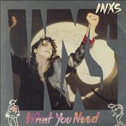 Click here for more info about 'Inxs - What You Need'