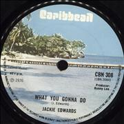 Click here for more info about 'Jackie Edwards - What You Gonna Do'
