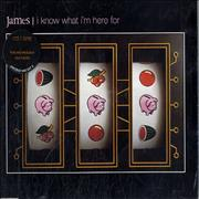 Click here for more info about 'James - I Know What I'm Here For'