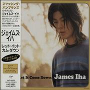 Click here for more info about 'James Iha - Let It Come Down'