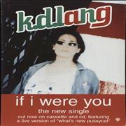 Click here for more info about 'K.D. Lang - If I Were You - Counter Display Stand'