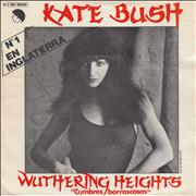 Click here for more info about 'Kate Bush - Cumbres Borrascosas'