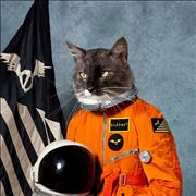Click here for more info about 'Klaxons - Surfing The Void'