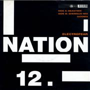 Click here for more info about 'Nation 12 - Electrofear'