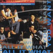 Click here for more info about 'New Kids On The Block - Call It What You Want'