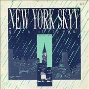 Click here for more info about 'New York Skyy - Givin' It (To You)'