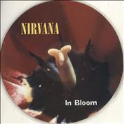 Click here for more info about 'Nirvana (US) - In Bloom - No Sleeve'