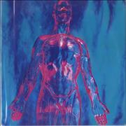 Click here for more info about 'Nirvana (US) - Sliver - Black Vinyl + Black Label Reissue'