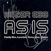 Click here for more info about 'Nitzer Ebb - As Is - signed'