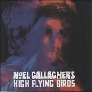 Click here for more info about 'Noel Gallagher - Noel Gallagher's High Flying Birds Tour'