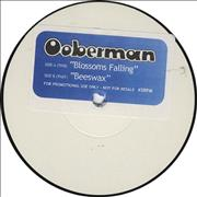 Click here for more info about 'Ooberman - Blossoms Falling - Test Pressing'