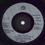Click here for more info about 'Paul Weller - Shadow Of The Sun (Live) EP'
