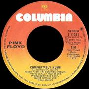 Click here for more info about 'Comfortably Numb'