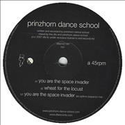Click here for more info about 'Prinzhorn Dance School - You Are The Space Invader'