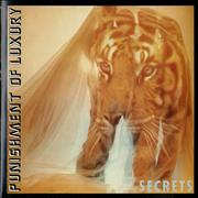 Click here for more info about 'Punishment Of Luxury - Secrets'