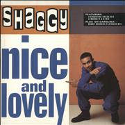 "Shaggy Nice & Lovely UK 12"" vinyl"